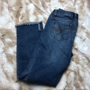 Earl Jeans Women 4 Skinny Ankle Stretch Blue Jeans